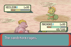 Pokemon Emerald fight