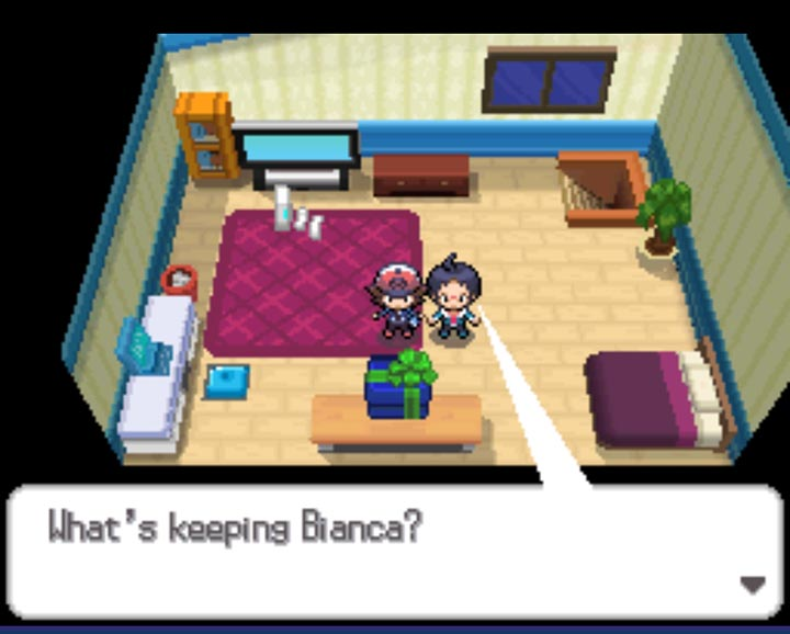Pokemon Black Nintendo DS UK screenshot