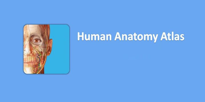 Human Anatomy Atlas 2021 APK cover 720x360